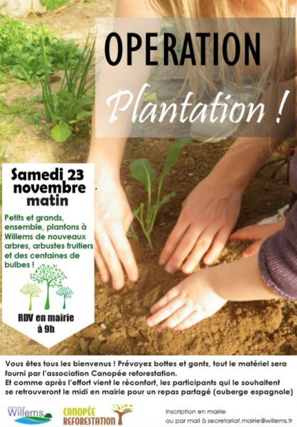 plantations-23-nov